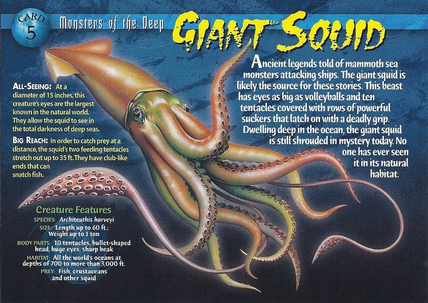 Giant_Squid_front