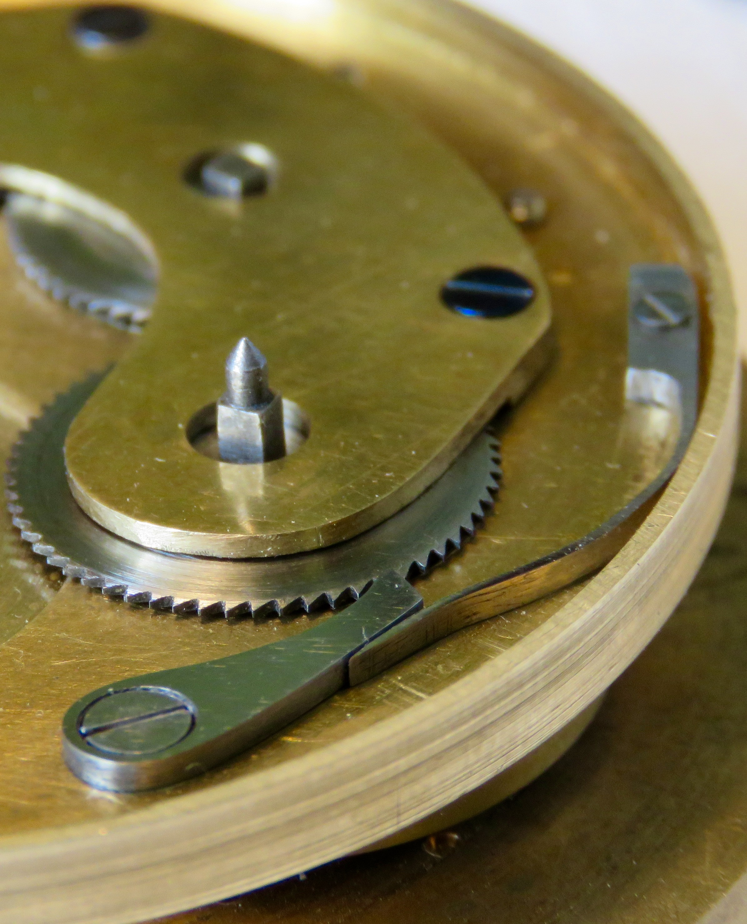 Australian watchmaker Reuben Schoots
