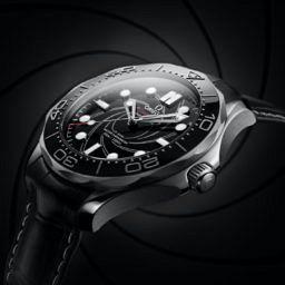 Omega Seamaster Diver 300M Platinum