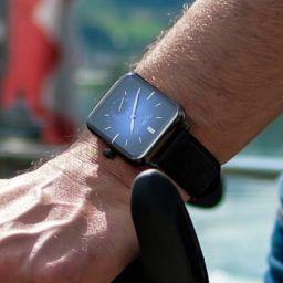 Moser Swiss Alp Watch