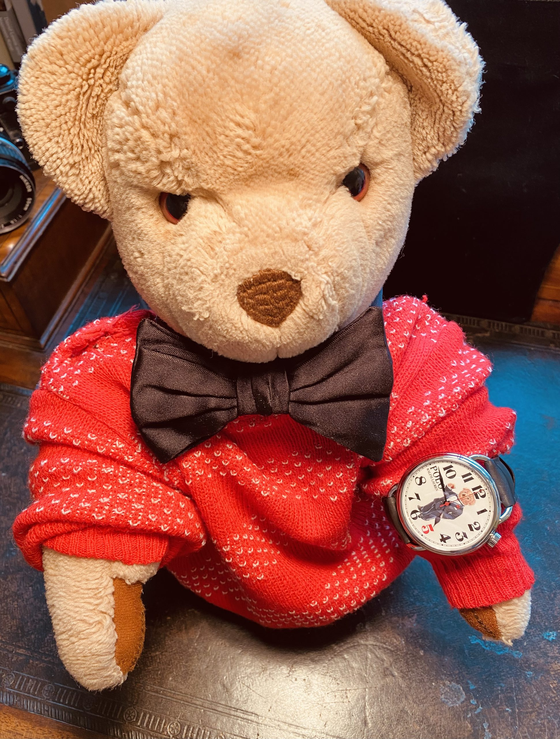 HANDS-ON: The Ralph Lauren 'Negroni Bear' Polo Bear watch made me want to wear black tie so bad, I did it in my garden