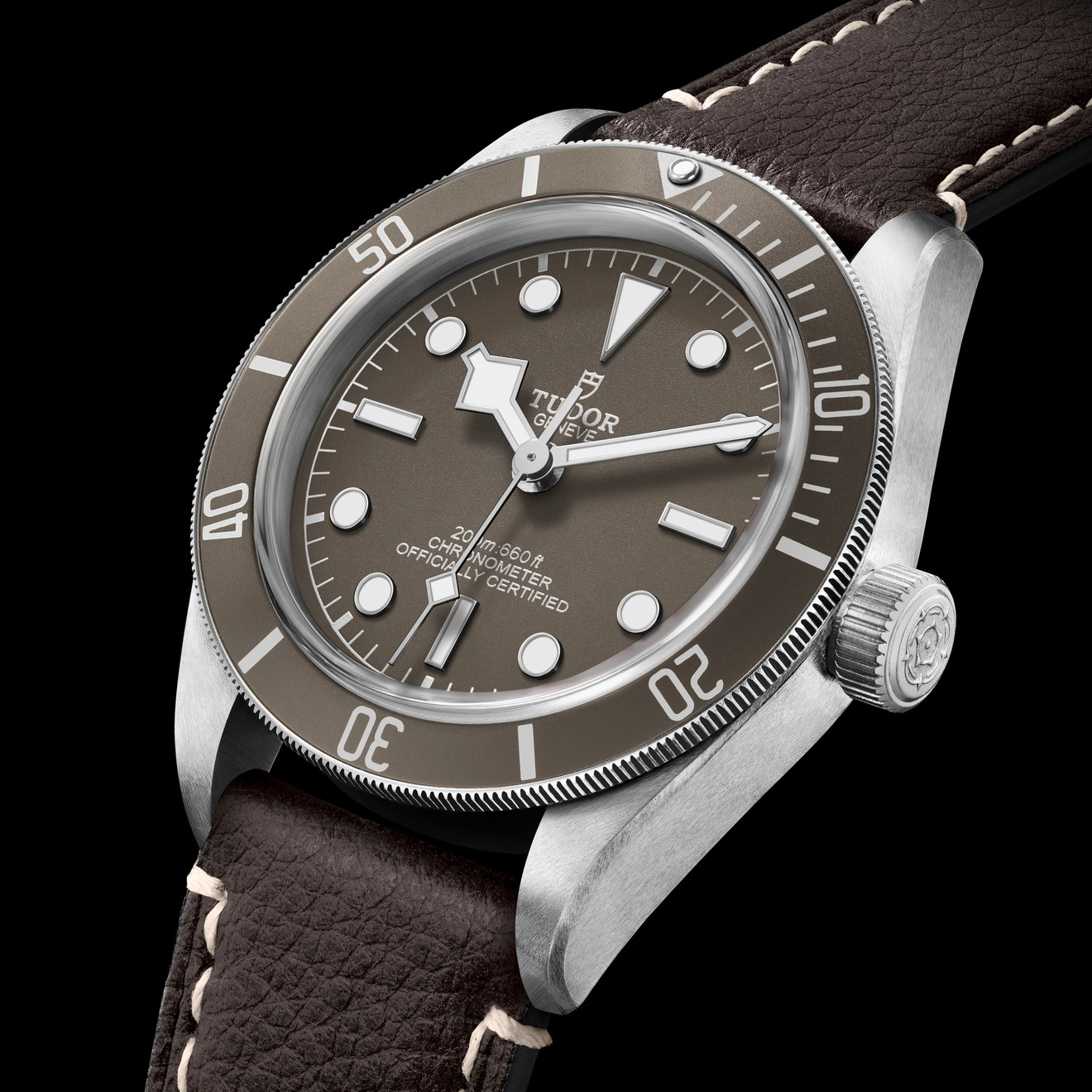 Hey, wait, so this Tudor Black Bay 58 is silver not steel? What differences are there, then?
